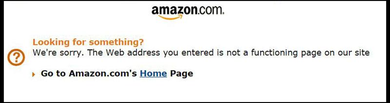 Screenshot of Amazon Site with Error