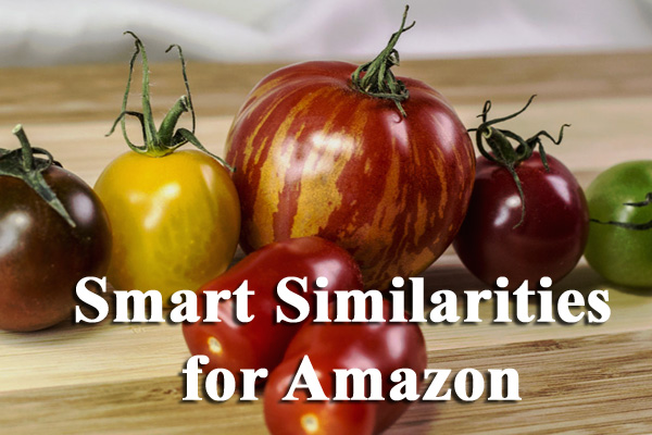 Smart Similarities for Amazon Wordpress Plugin